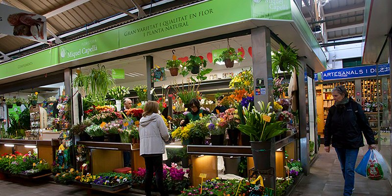 New Collection of Artificial Flowers in Floristería Miquel Capellà