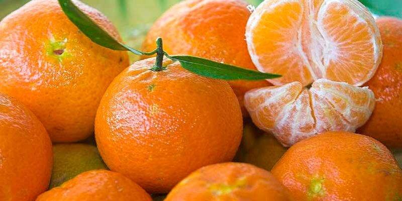 mandarinas del mercado de santa catalina mallorca