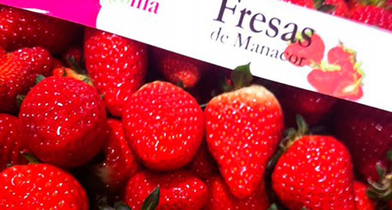 Mercado de Santa Catalina producto de temporada abril fresas