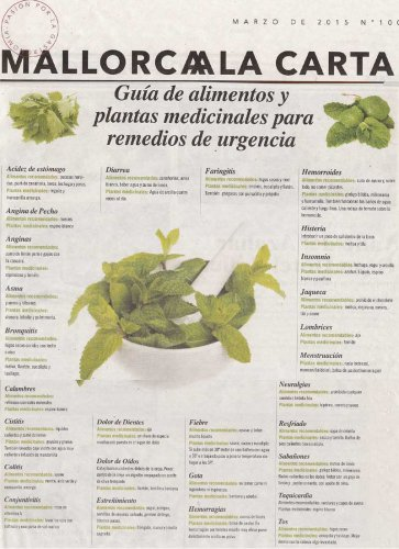 Medicinal plants by Mallorca a la carta