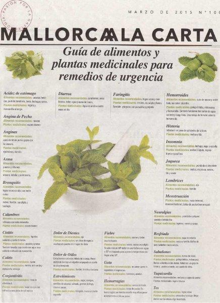 Plantas medicinales en Mallorca a la carta